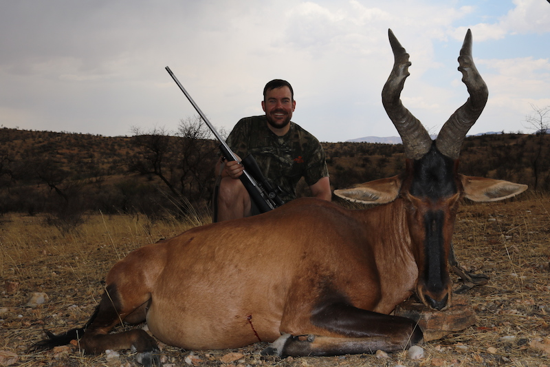 Red Hartebeest - C.Fast